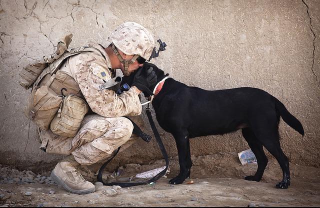 pes a voják