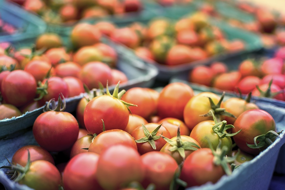 paradajky, náku